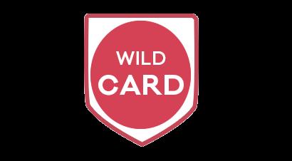 Wildcard SSL Certificates